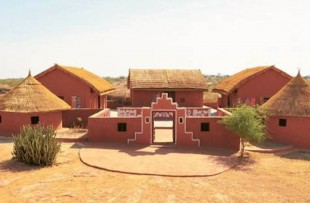 Desert Museum copy