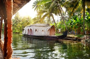 House boat in backwaters at palms background in alappuzha, Kerala, India copy