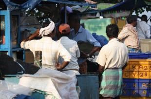 India Dec 2011 309 copy
