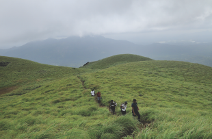 chembra_peak_wayanad_98 copy 2